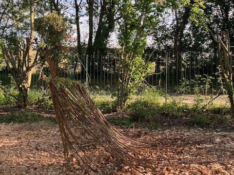 Fête de la Nature dans le jardin de la Tiny House de soin